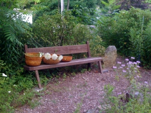 SWM-NMG-2014-bench-300x225.jpg