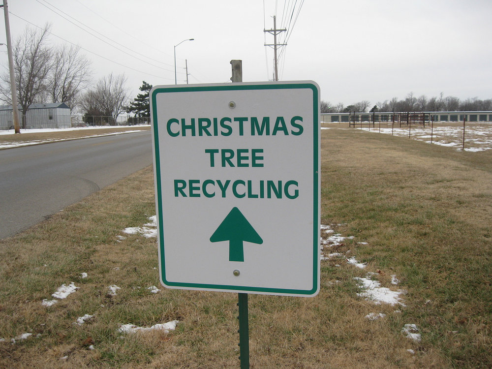 Look up local tree recycling programs