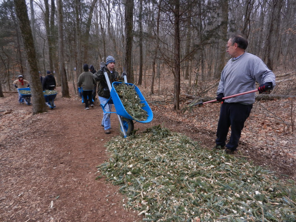 Cushion trails for joggers and hikers while preventing erosion and runoff with mulched trees  (via Radnor Lake Trees to Trails )
