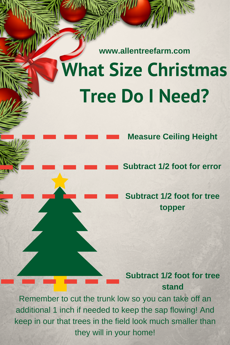 What Size Christmas Tree Do I Need_.png