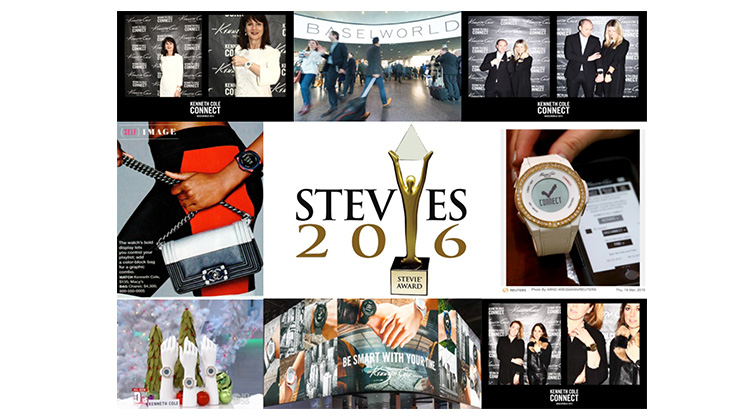 2016 Silver Steve Award