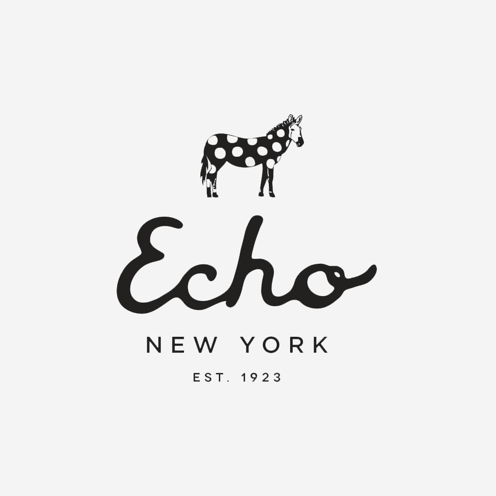 echo-design-group-logo.png