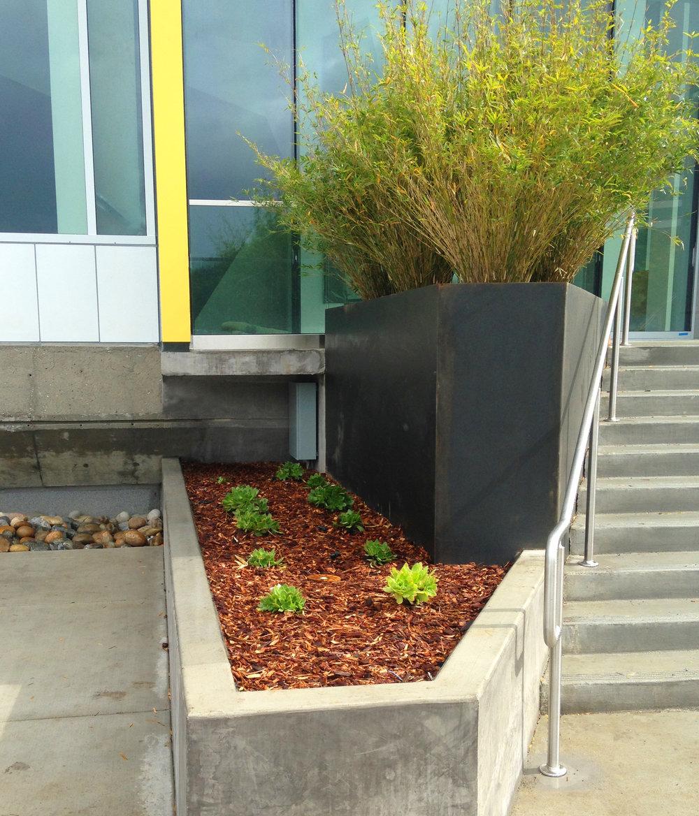 1425-planters1.jpg