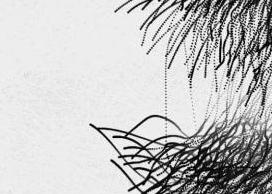 Wanda Plaza-3.jpg