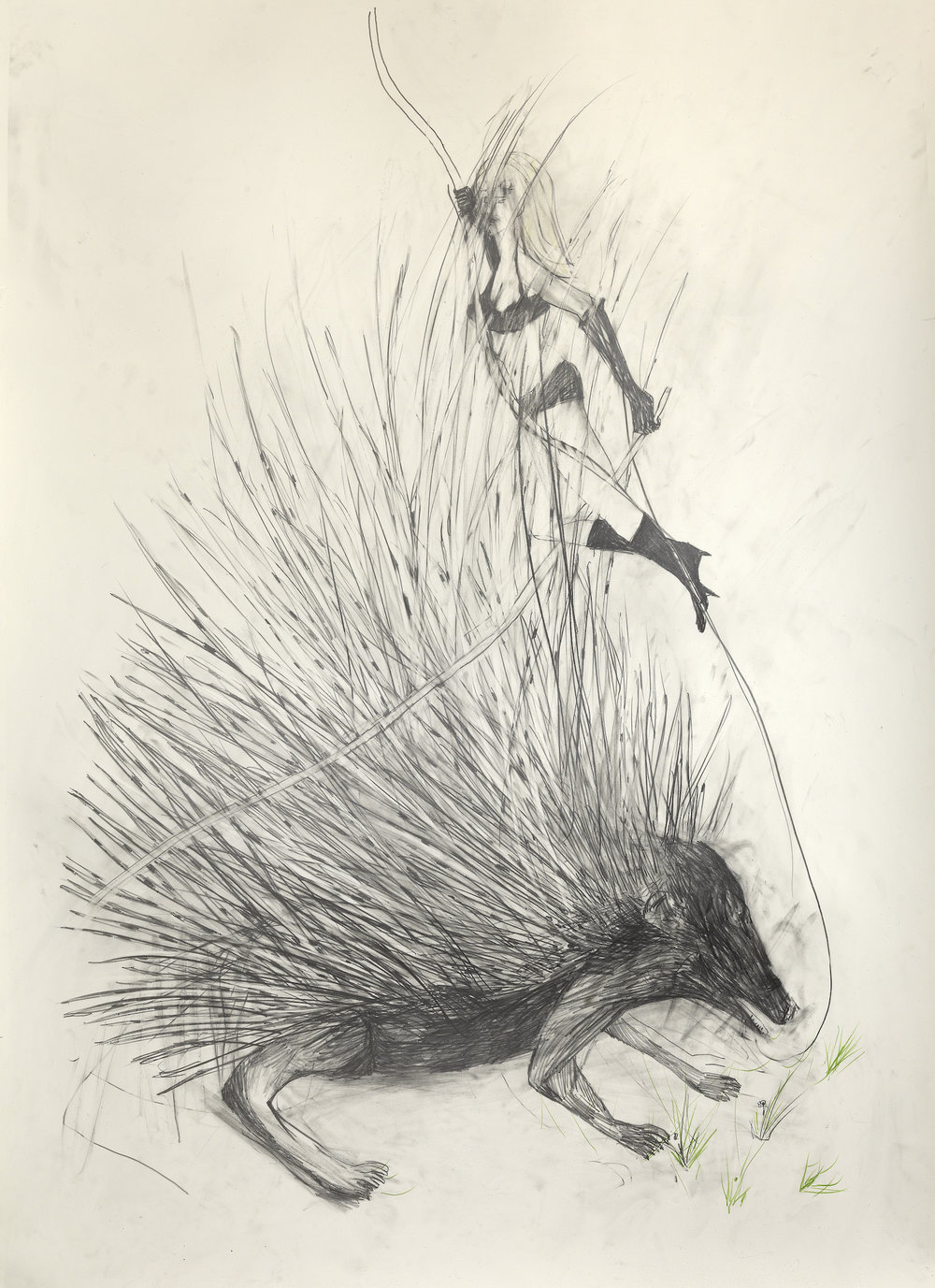 Lady and Porcupine