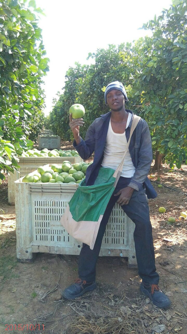 Dickson, an Agrostudies intern who is now a Farm Manager for SUGECO at Rufiji