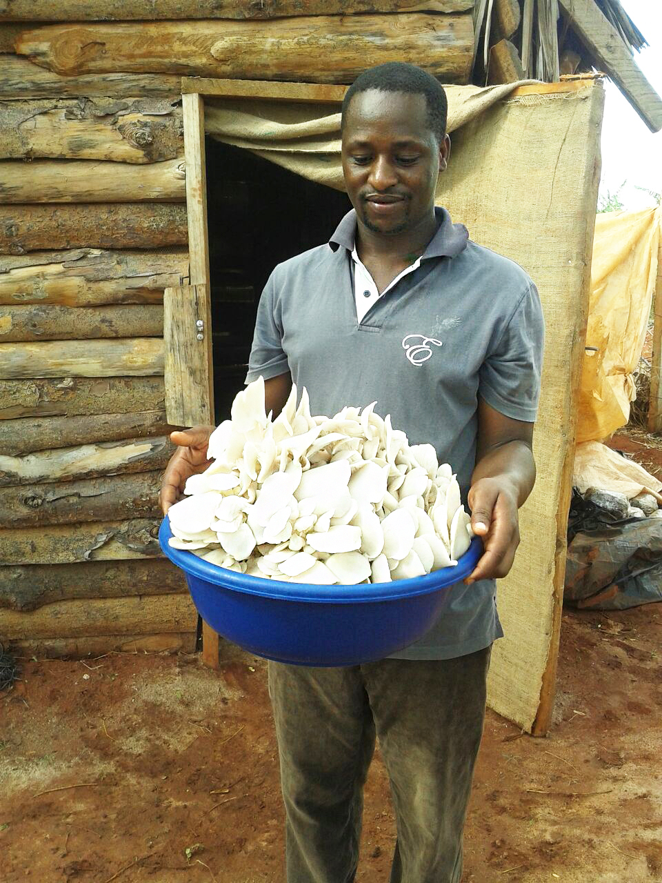 Teddy Joachim Massawe with his mushroom project