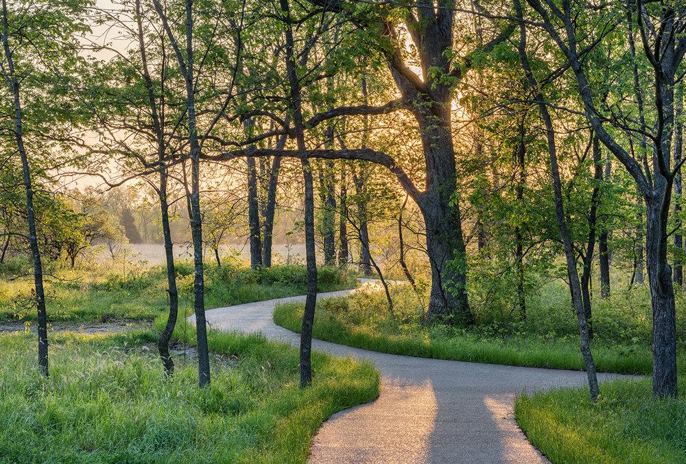 TerraDesignStudios_PrairieGardenTrust-Spring Path_PhotoCreditHenryDomke.jpg
