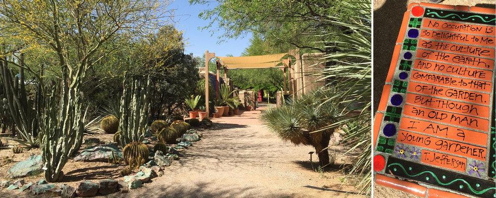 Terra Kicks Off Tucson Botanical Gardensu0027 Master Plan! U2014 Terra Design  Studios, LLC