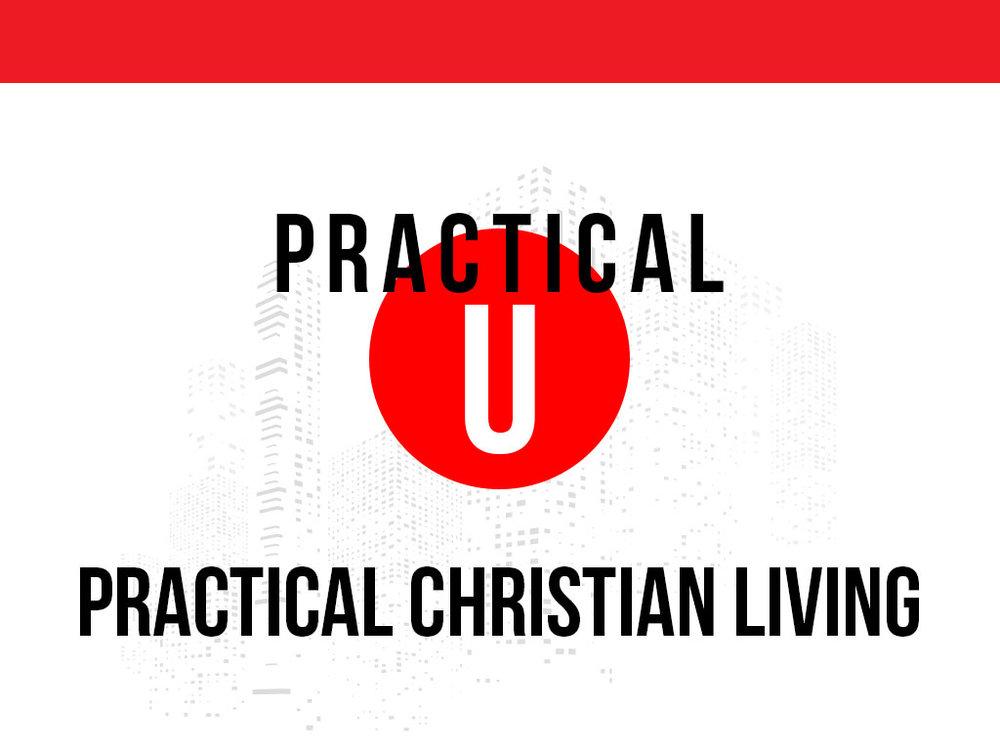 Practical U - Website.jpg