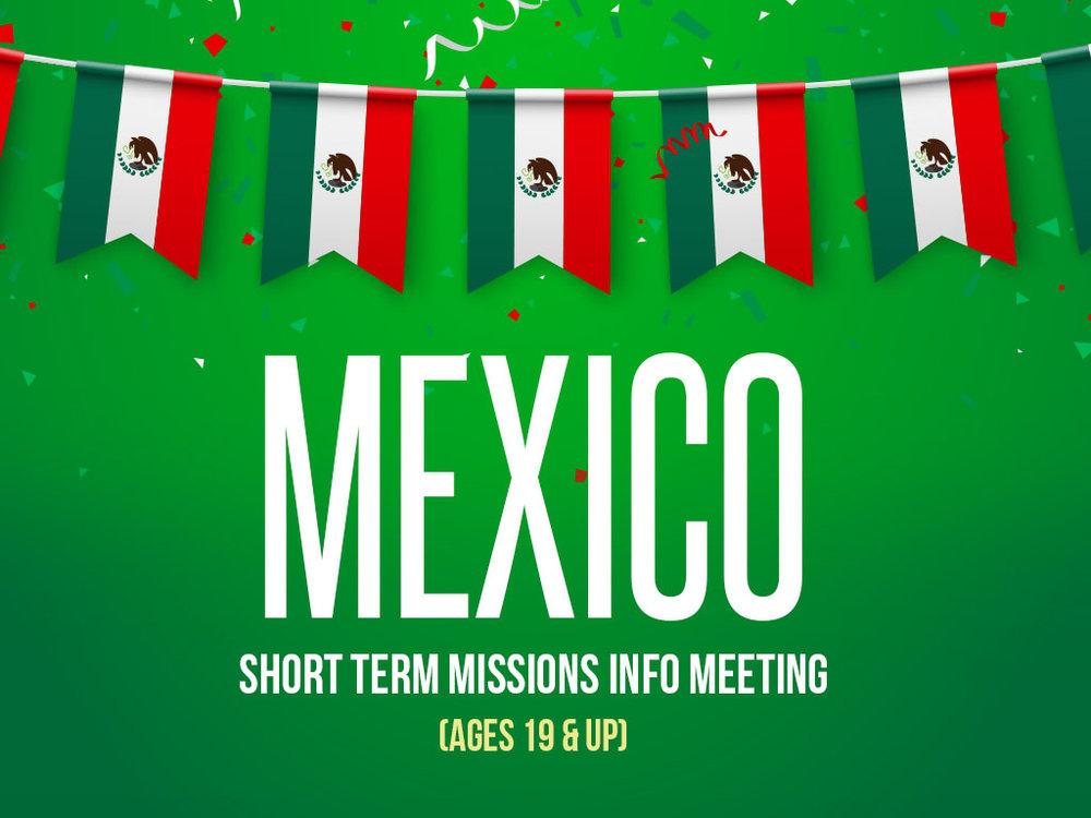 Mexico STM 2019 - Website.jpg