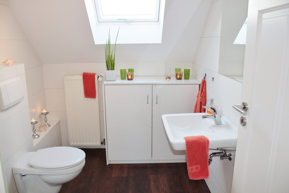 how-to-prevent-clogged-toilet