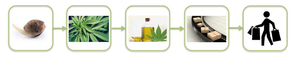 high-hampton-cannabis-distribution-cudahy.png