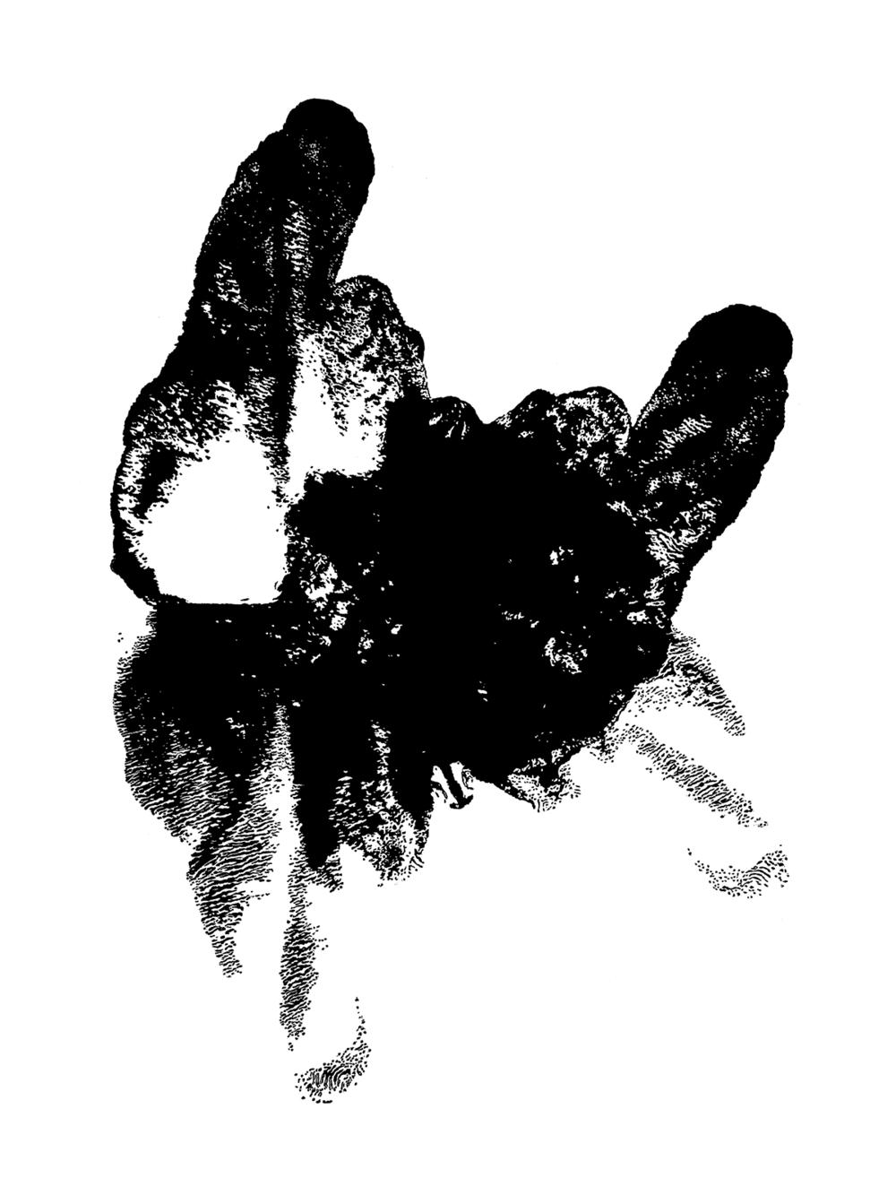 linocut, 60x80cm, 2018