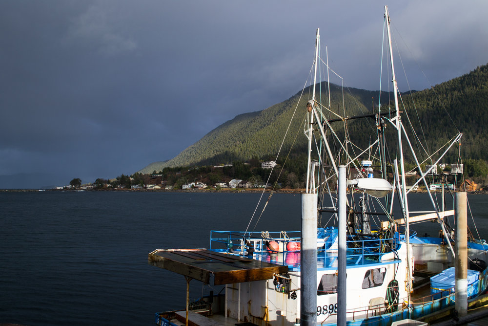 Donating to the Sitka Seafood festival doesn't just support next year's event- it is an opportunity to give back to programs that sustain our fishery resources. Photo by Alyssa Russell.