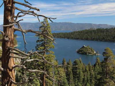 Tahoe-PICTURE.jpg