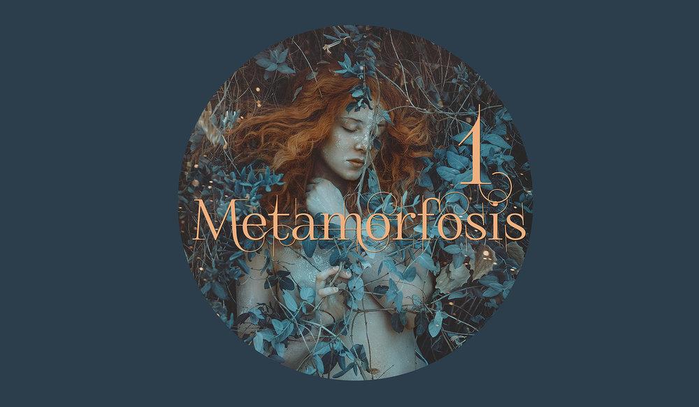 metamorfosisytp.jpg
