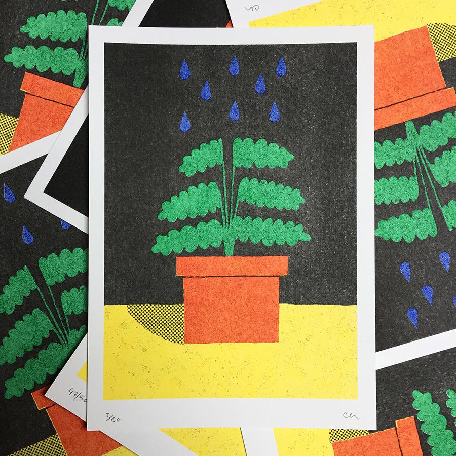 plant_web.jpg