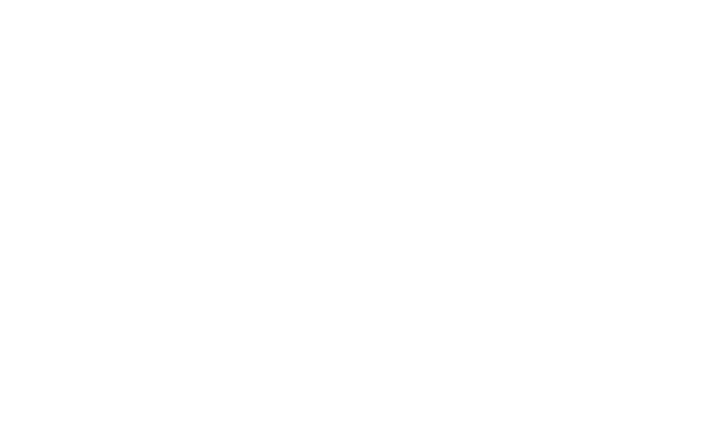 Dominican Joe Foundation