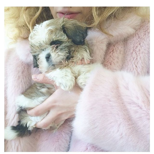 We love furry things… as long as it's not the hair on our body.