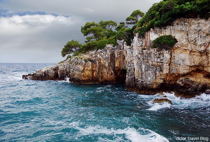 nature-istrian-peninsula-katarina-island-hotel-rovinj-701.jpg