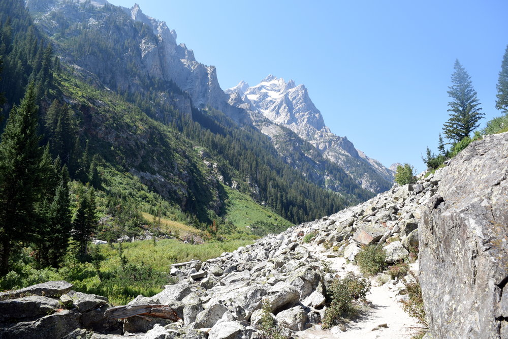 The Cascade Canyon hike in Grand Teton National Park is spectactular.