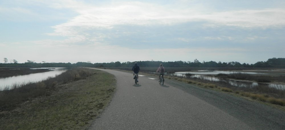My parents cycle along through the wetlands at Assateague Island National Seashore.