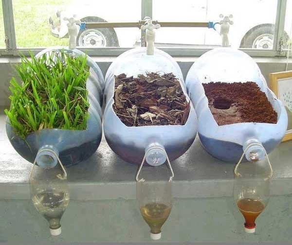 This simple science experiment shows just how much plants filter water. Image from  Starnet .