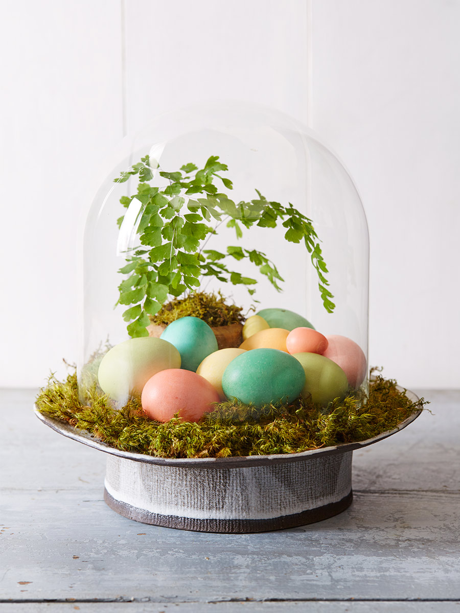FC_April16_Eggs_Cloche_with_Potted_Fern_Greenery_027.jpg