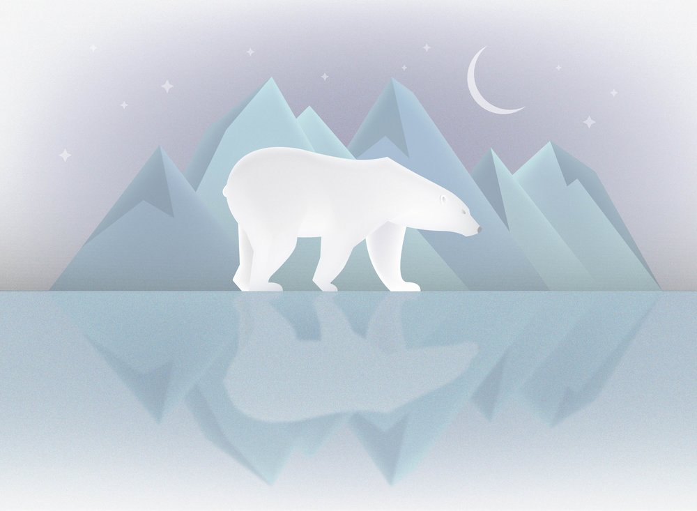 Polar bear illustration Sean Packard