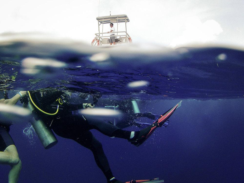 cozumel-scuba-diving.jpg
