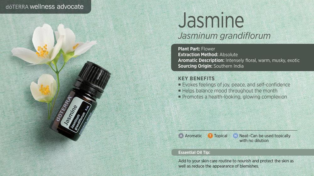 wa-jasmine.jpg