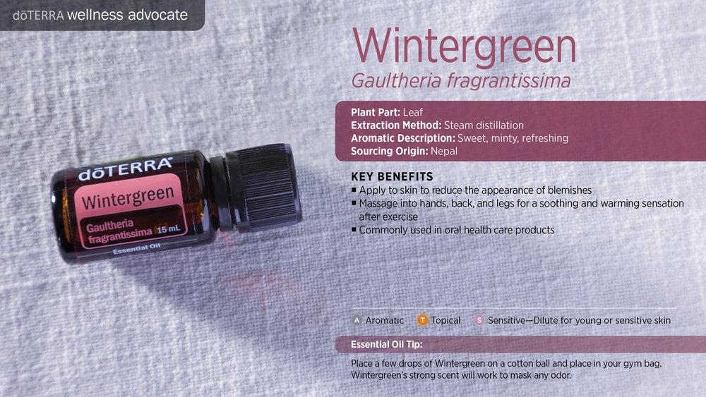 wa-wintergreen.jpg