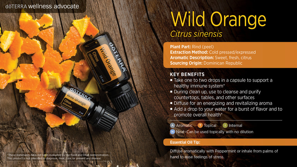 wa-wild-orange.jpg
