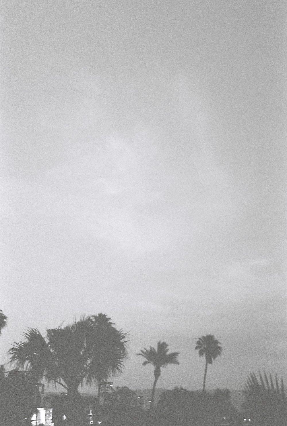 Photography - B & W.JPG