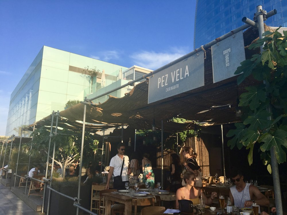 Sitting beachside underneath the green canopy at Pez Vela