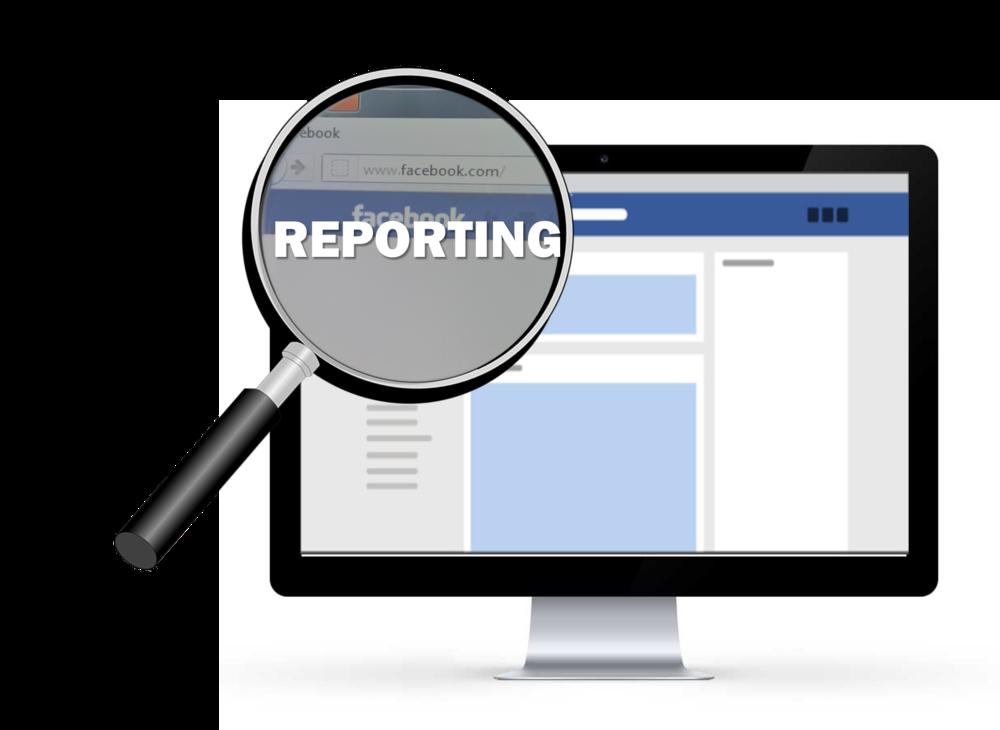 7 REPORT2.png