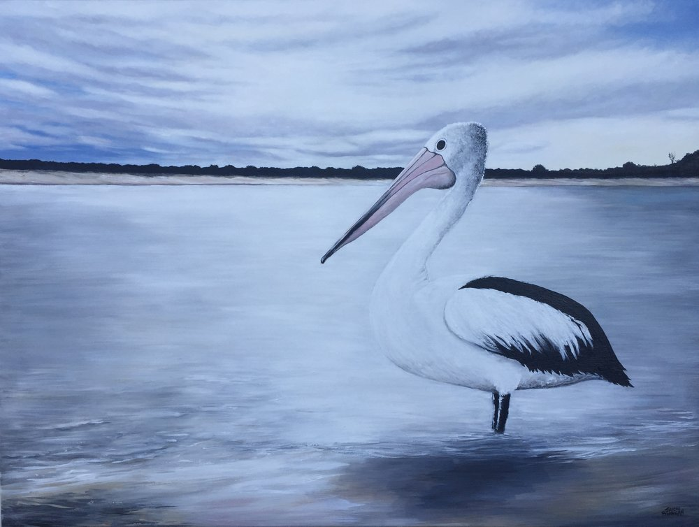 'Pelican by the Bay' acrylic on stretched canvas 102cm x 77cm FOR SALE