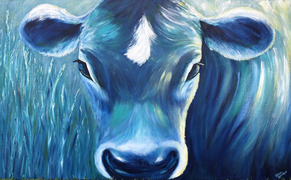 """""""AJ's Blue Cow"""" 125cm x 76cm SOLD"""