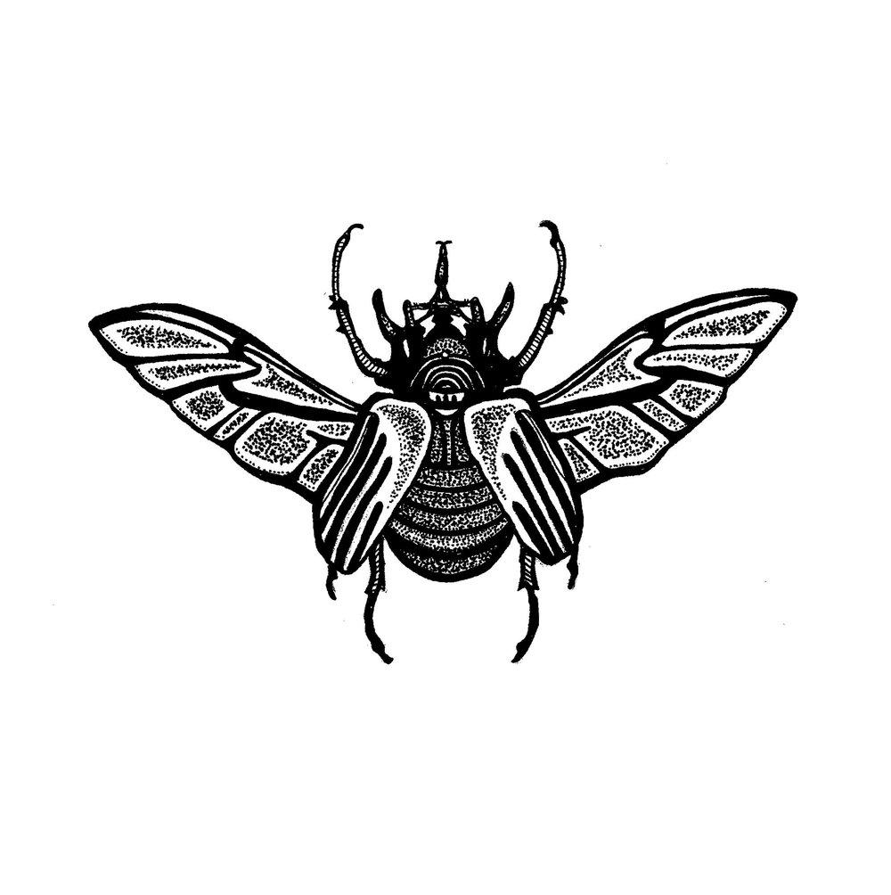 Elephant Beetle Tattoo design 2016.