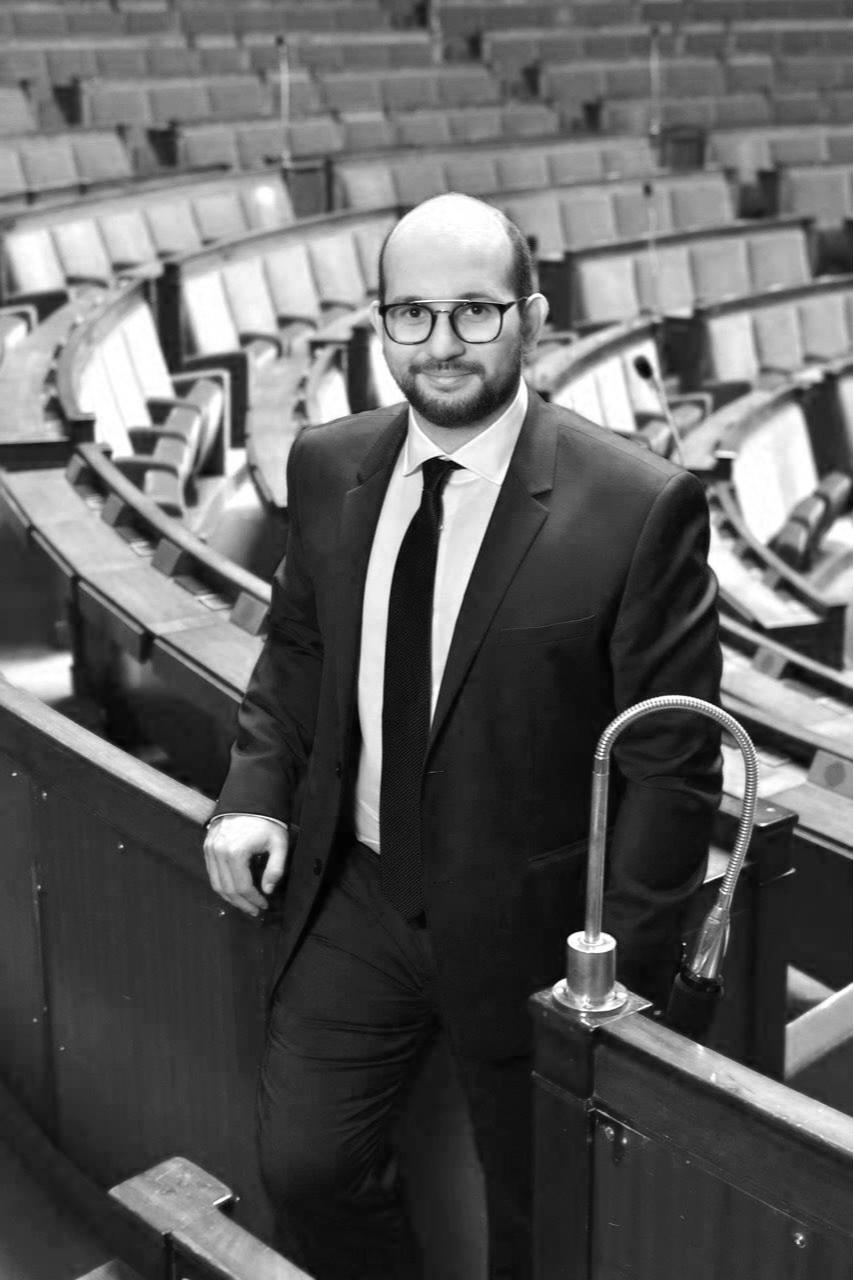Ludovic Mendes MP, En Marche