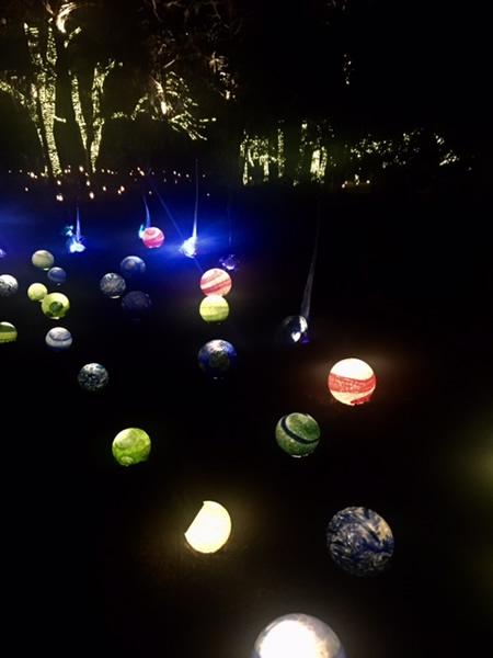 lit-like-a-cosmic-garden.jpg