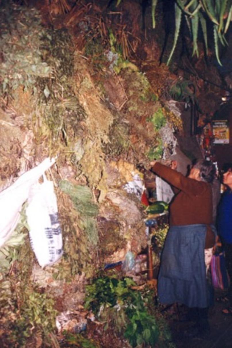 Mercado Trujllo 3.jpg