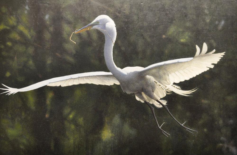 Egret acrylic 20 x 3