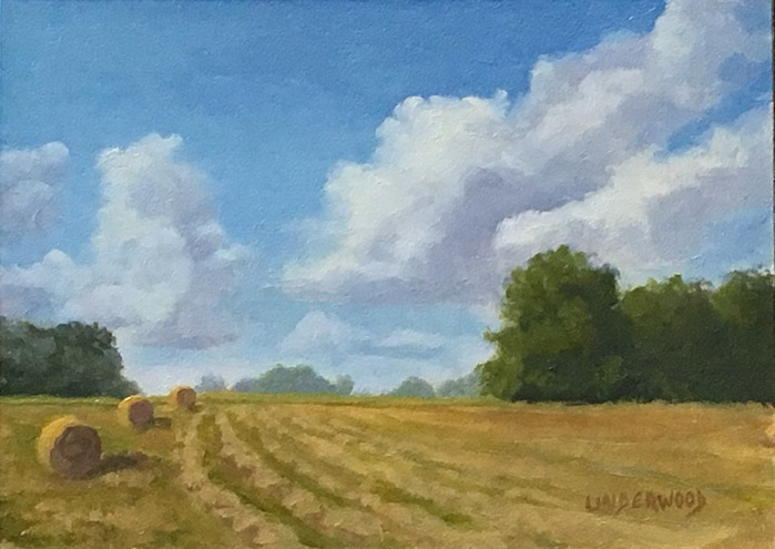 Study - First Cut 5x7 Oil