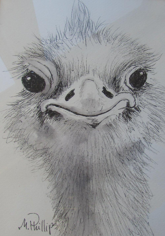 Ostrich ink