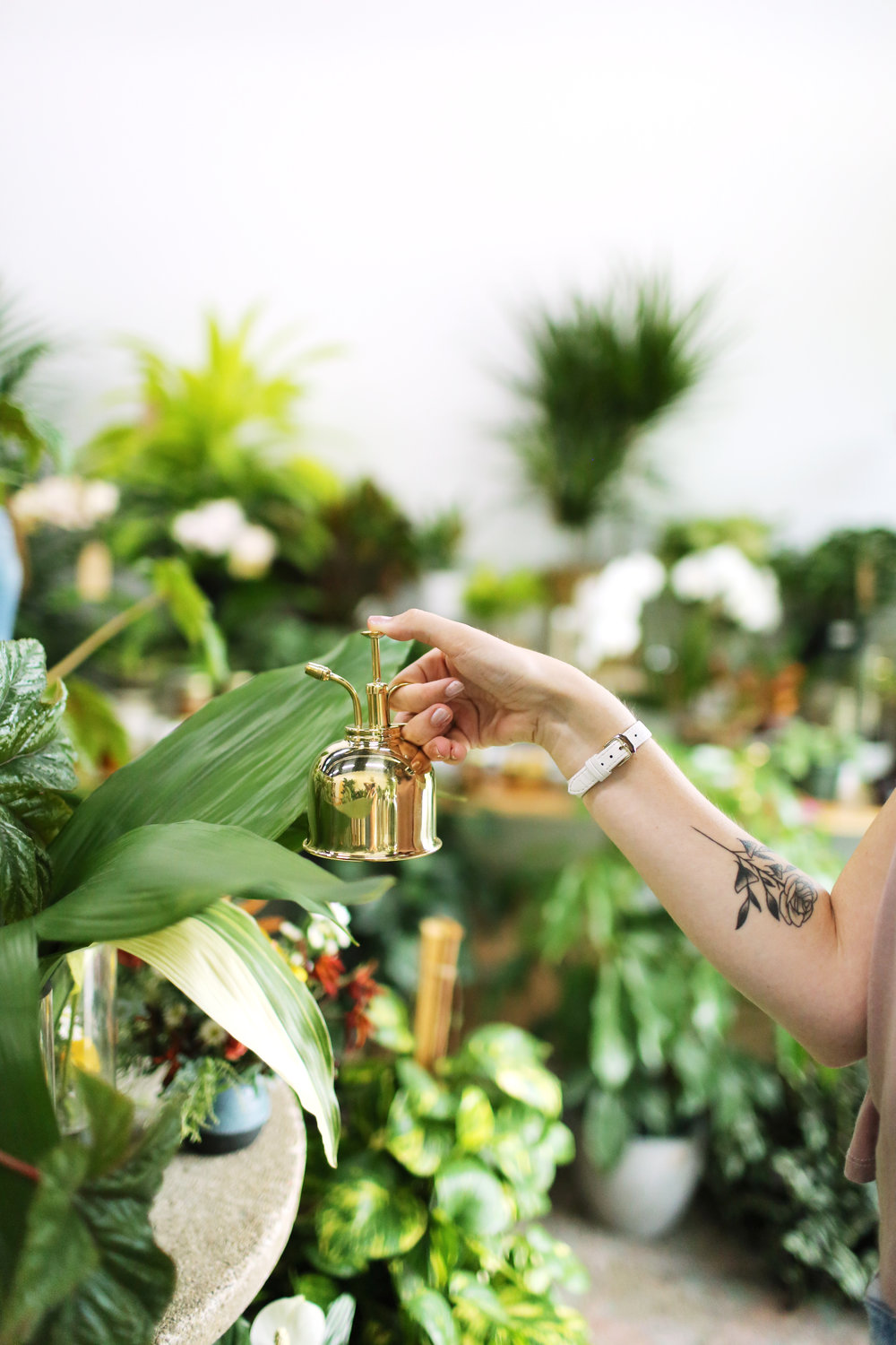 Creative Direction + Photography for  Grounded Plant + Floral Co.