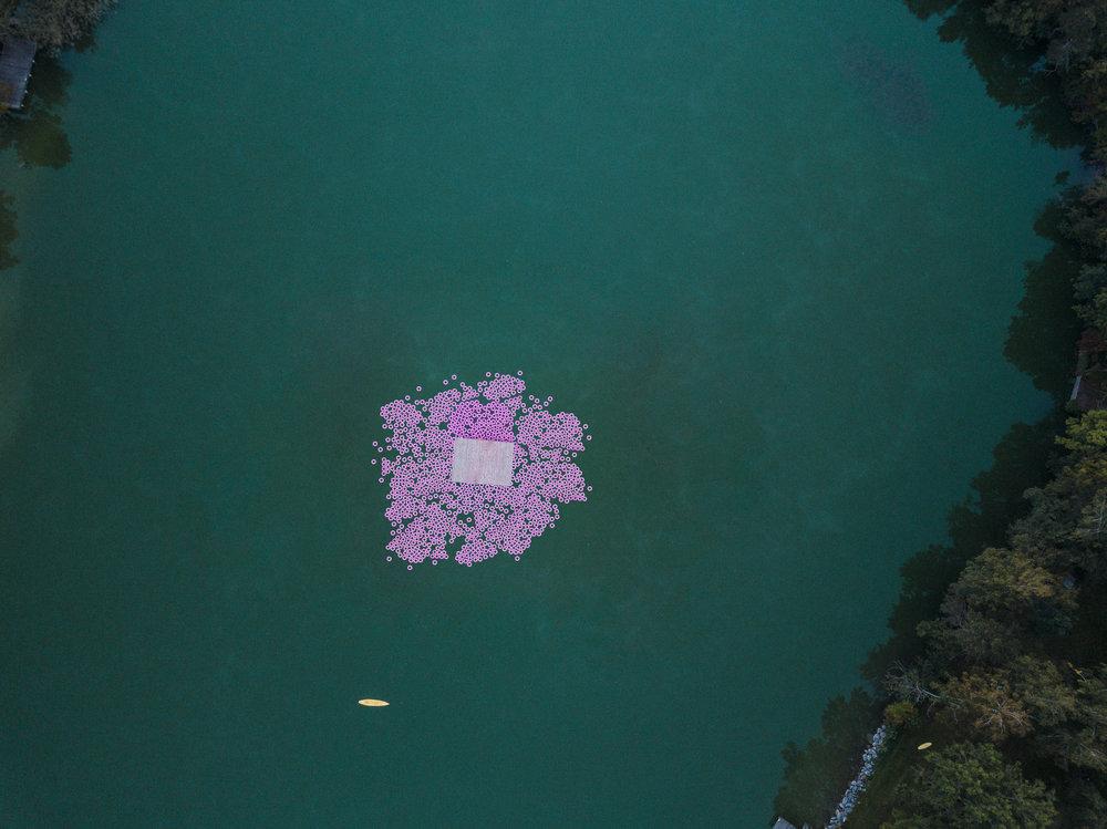 pink poem 2.jpg