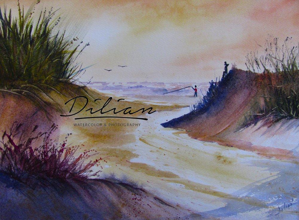 Carolinas' Dune