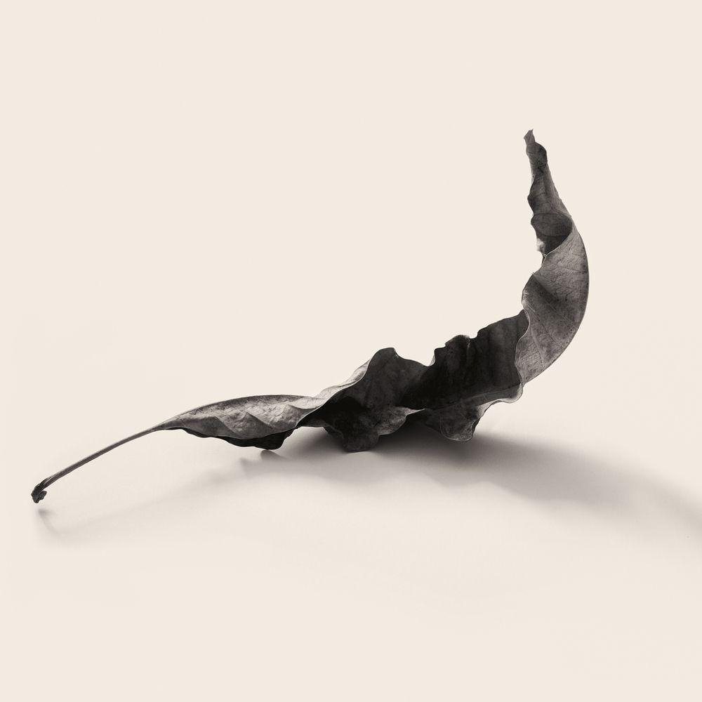 Carlos-Ocando-Intimate-Meditation-01.jpg